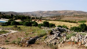 29 looking north to shechem