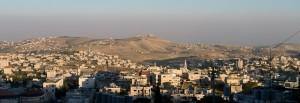 6 Beit Sahour, Bethlehem, Ruth gleaned