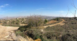 view from Beit El