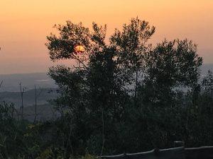 Sunset at ad Hashmona