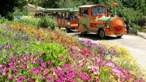 Jerusalem Botanical Garden