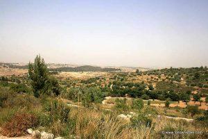 Neot Kedumim Biblical Garden